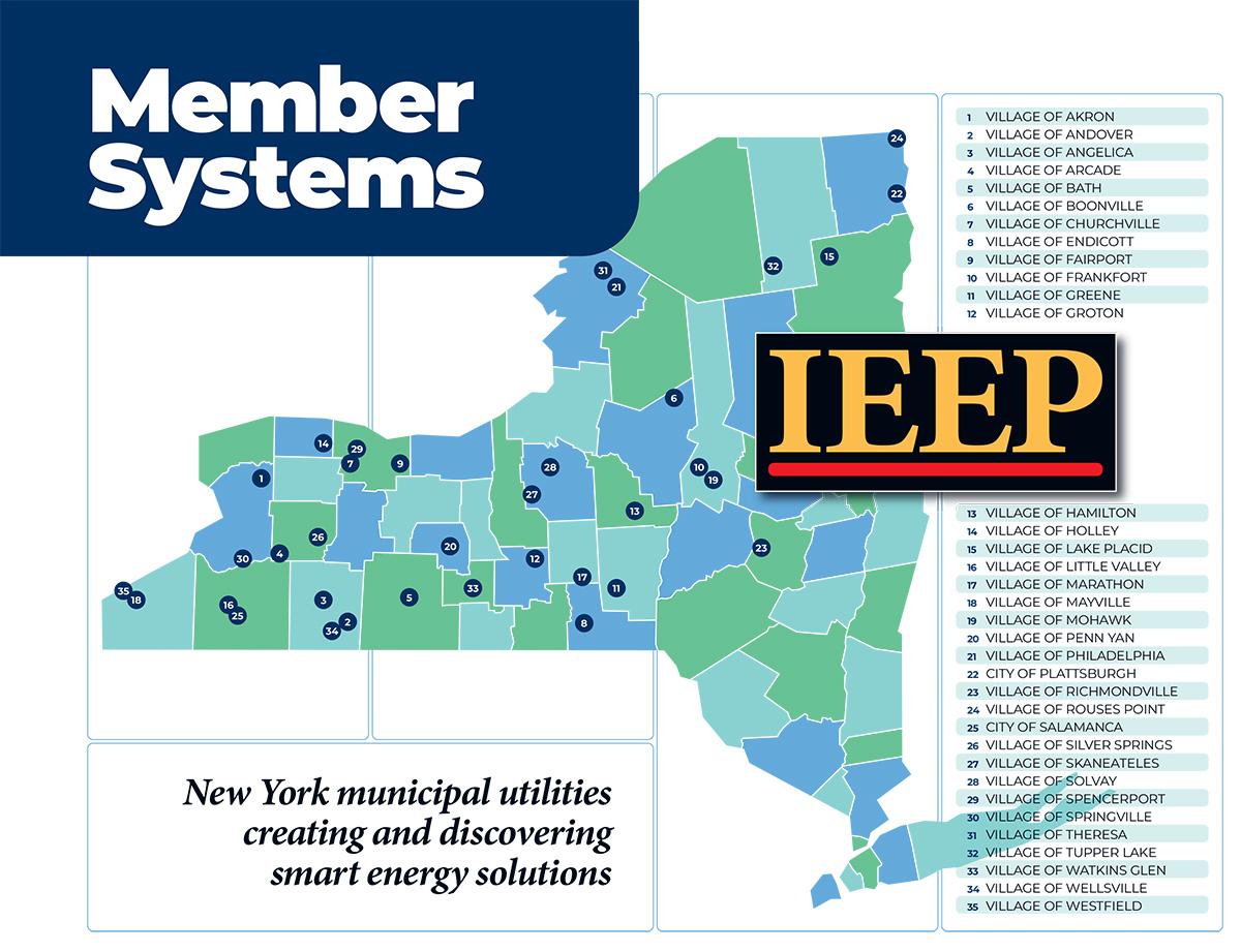 IEEP Members